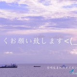 宮古島に行って参ります!