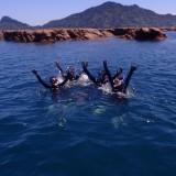 本日も体験ダイビングです!